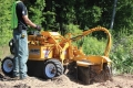 Rental store for STUMP GRINDER 25 HP in Oswego IL