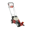 Rental store for EDGER, LAWN HIGH SPD LW in Oswego IL