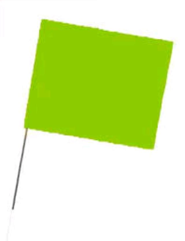 Where to find FLAG,  2.5 X 2.5 GLO LIME in Oswego
