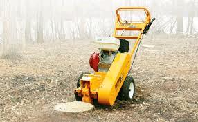 Where to find STUMP GRINDER 13HP  3 in Oswego